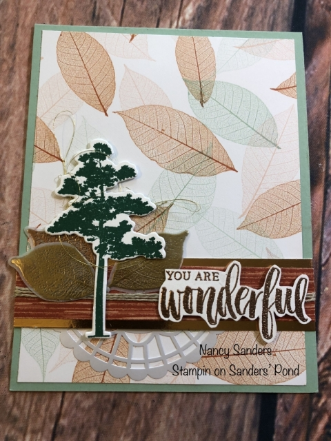 Nancy Sanders, Susan's WOW Team Card Swap, Stampin' Up!