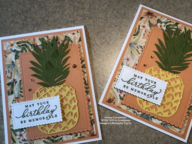 Timeless Tropical Birthday, Susan Levasseur, WOW NOLA Creations, Stampin' Up!